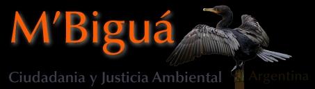 M'Biguá | Ciudadanía y Justicia Ambiental
